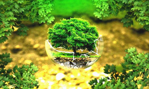 ظرفیت-پذیرش-و-انتخاب-رشته-دکتری-علوم-و-مهندسی-محیط-زیست-سراسری-و-دانشگاه-آزاد-97